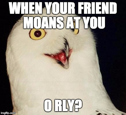 O RLY? | WHEN YOUR FRIEND MOANS AT YOU O RLY? | image tagged in o rly | made w/ Imgflip meme maker