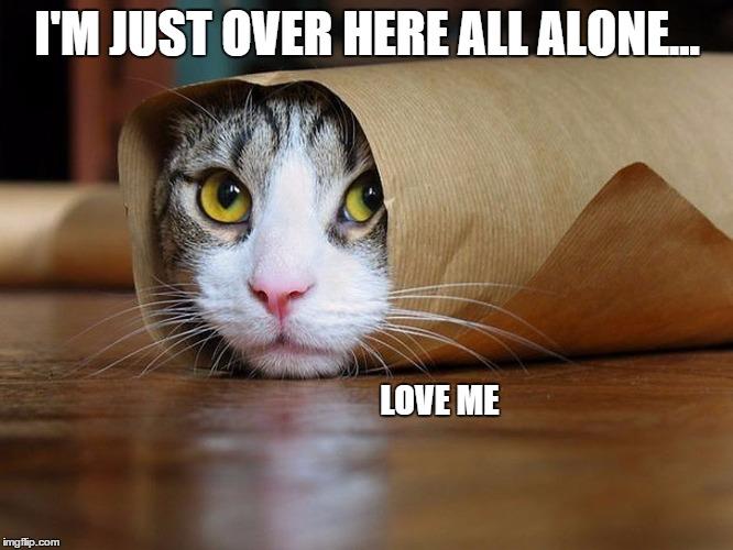 Image result for love me memes