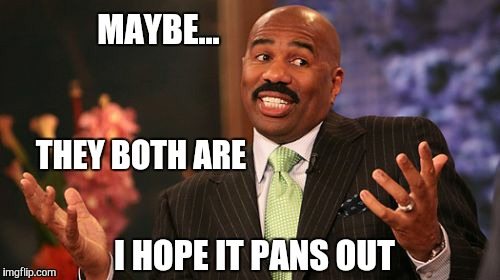 Steve Harvey Meme | MAYBE... THEY BOTH ARE I HOPE IT PANS OUT | image tagged in memes,steve harvey | made w/ Imgflip meme maker