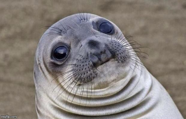 Awkward Moment Sealion Meme | image tagged in memes,awkward moment sealion | made w/ Imgflip meme maker
