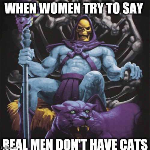 Real men have cats | WHEN WOMEN TRY TO SAY REAL MEN DON'T HAVE CATS | image tagged in real men,cats,memes,skeletor,funny | made w/ Imgflip meme maker