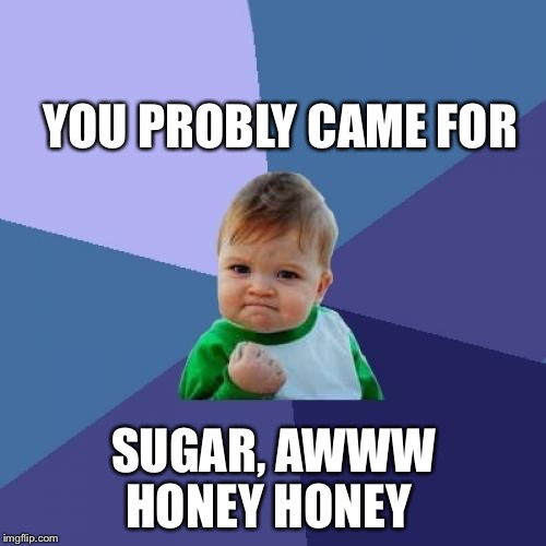 Success Kid Meme | YOU PROBLY CAME FOR SUGAR, AWWW HONEY HONEY | image tagged in memes,success kid | made w/ Imgflip meme maker