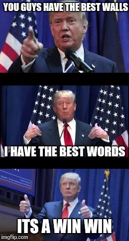 Trump lets make a deal | YOU GUYS HAVE THE BEST WALLS I HAVE THE BEST WORDS ITS A WIN WIN | image tagged in donald trump,china,original meme | made w/ Imgflip meme maker