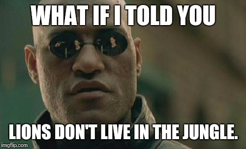 Matrix Morpheus Meme | WHAT IF I TOLD YOU LIONS DON'T LIVE IN THE JUNGLE. | image tagged in memes,matrix morpheus | made w/ Imgflip meme maker