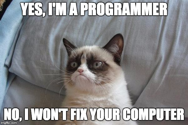 Grumpy Cat Bed Meme |  YES, I'M A PROGRAMMER; NO, I WON'T FIX YOUR COMPUTER | image tagged in memes,grumpy cat bed,grumpy cat | made w/ Imgflip meme maker