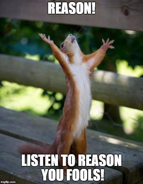 Squirrel of Reason | REASON! LISTEN TO REASON YOU FOOLS! | image tagged in happy squirrel,reason,politics,madness,meme,funny | made w/ Imgflip meme maker