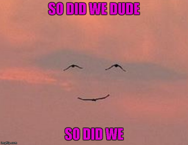 SO DID WE DUDE SO DID WE | made w/ Imgflip meme maker