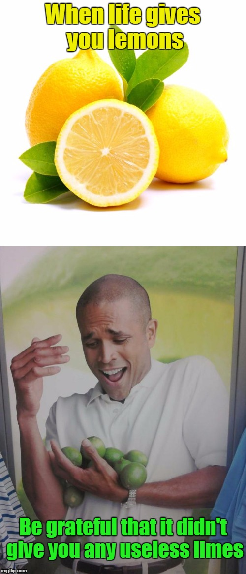 Lemons vs Limes |  When life gives you lemons; Be grateful that it didn't give you any useless limes | image tagged in ewww limes nobody likes limes,thebayernfan,why can't i hold all these limes,lemons,limes | made w/ Imgflip meme maker