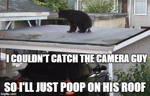 I COULDN'T CATCH THE CAMERA GUY SO I'LL JUST POOP ON HIS ROOF | made w/ Imgflip meme maker