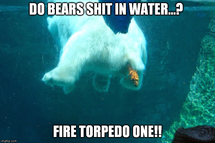 DO BEARS SHIT IN WATER...? FIRE TORPEDO ONE!! | made w/ Imgflip meme maker