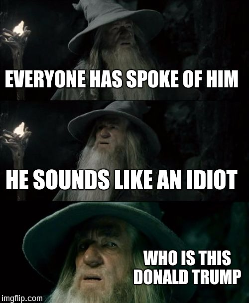 Confused Gandalf Meme | EVERYONE HAS SPOKE OF HIM HE SOUNDS LIKE AN IDIOT WHO IS THIS DONALD TRUMP | image tagged in memes,confused gandalf | made w/ Imgflip meme maker