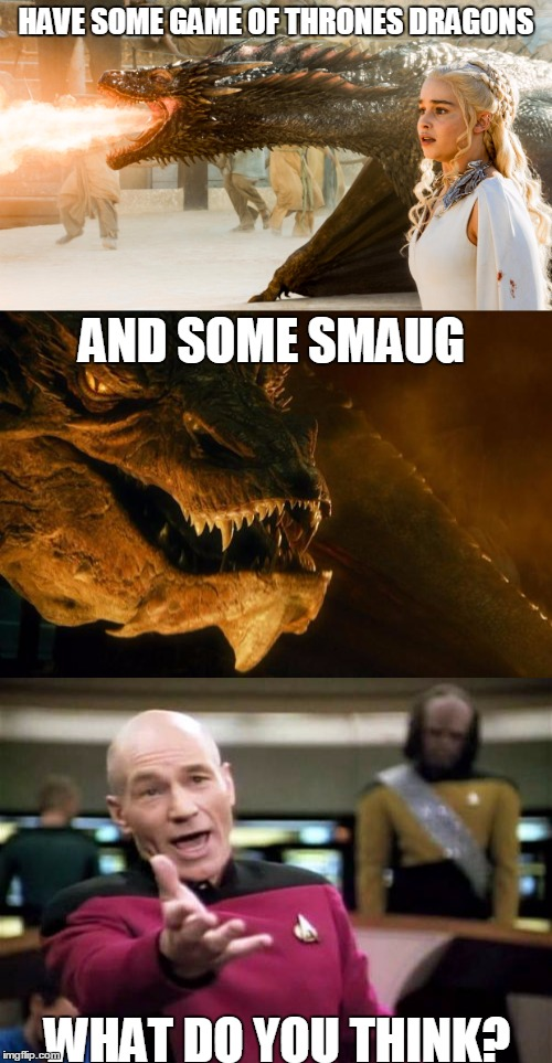 what do you think? | HAVE SOME GAME OF THRONES DRAGONS WHAT DO YOU THINK? AND SOME SMAUG | image tagged in memes,dragons,smaug,starflight the nightwing,game of thrones | made w/ Imgflip meme maker