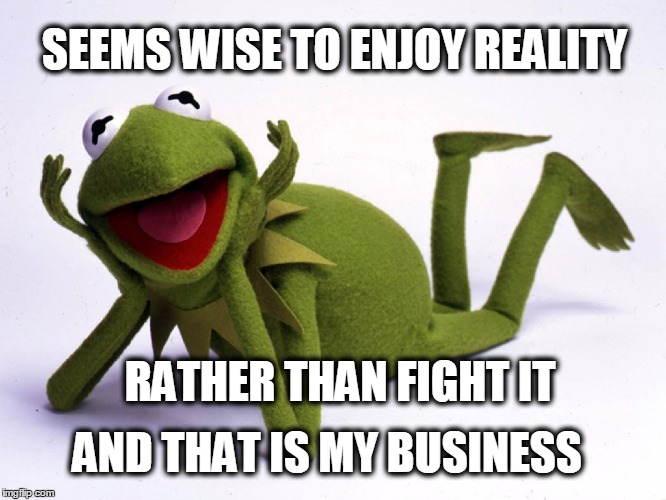 SEEMS WISE TO ENJOY REALITY AND THAT IS MY BUSINESS RATHER THAN FIGHT IT | made w/ Imgflip meme maker