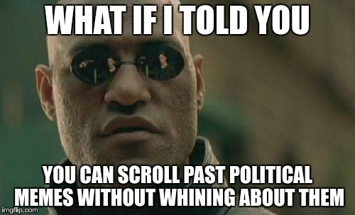 Matrix Morpheus Meme | WHAT IF I TOLD YOU YOU CAN SCROLL PAST POLITICAL MEMES WITHOUT WHINING ABOUT THEM | image tagged in memes,matrix morpheus | made w/ Imgflip meme maker