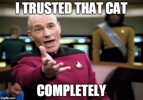 Picard Wtf Meme | I TRUSTED THAT CAT COMPLETELY | image tagged in memes,picard wtf | made w/ Imgflip meme maker