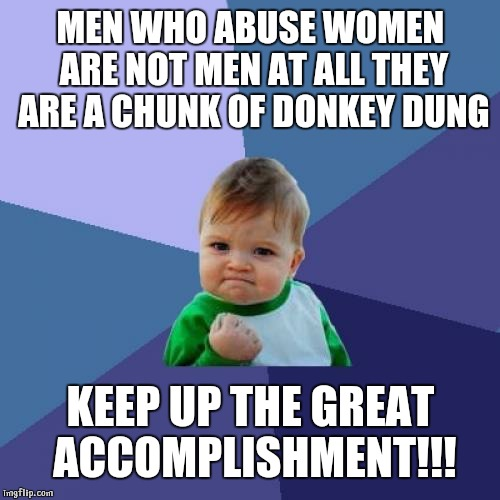 Success Kid Meme | MEN WHO ABUSE WOMEN ARE NOT MEN AT ALL THEY ARE A CHUNK OF DONKEY DUNG KEEP UP THE GREAT ACCOMPLISHMENT!!! | image tagged in memes,success kid | made w/ Imgflip meme maker