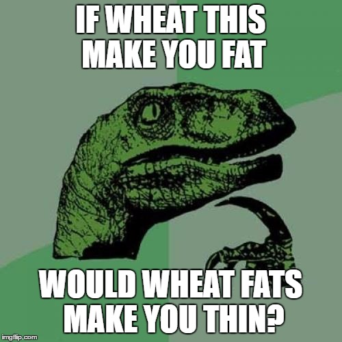 Philosoraptor Meme | IF WHEAT THIS MAKE YOU FAT WOULD WHEAT FATS MAKE YOU THIN? | image tagged in memes,philosoraptor | made w/ Imgflip meme maker