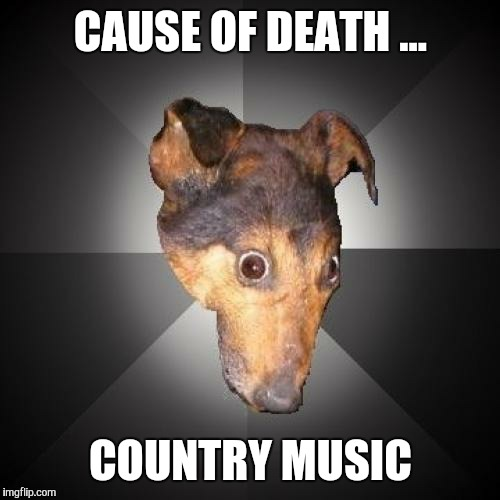 CAUSE OF DEATH ... COUNTRY MUSIC | made w/ Imgflip meme maker