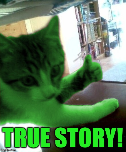 thumbs up RayCat | TRUE STORY! | image tagged in thumbs up raycat | made w/ Imgflip meme maker