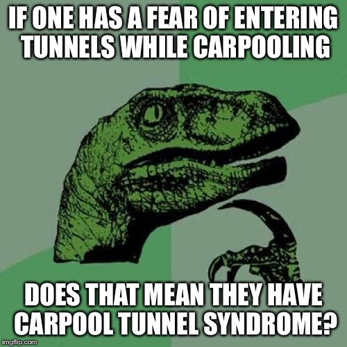 Philosoraptor Meme | IF ONE HAS A FEAR OF ENTERING TUNNELS WHILE CARPOOLING DOES THAT MEAN THEY HAVE CARPOOL TUNNEL SYNDROME? | image tagged in memes,philosoraptor | made w/ Imgflip meme maker