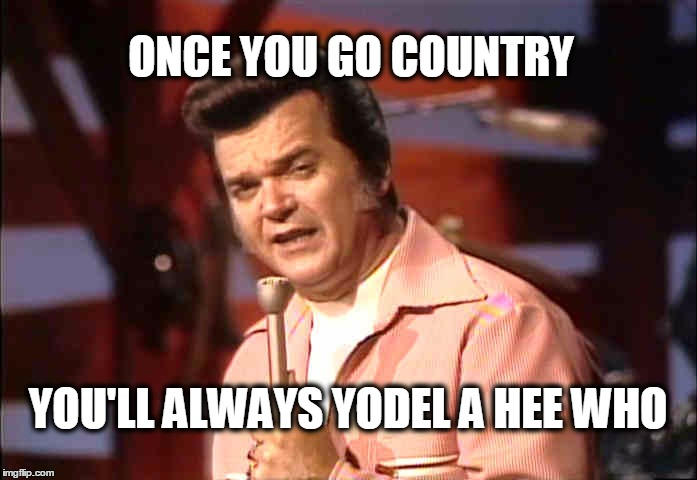 ONCE YOU GO COUNTRY YOU'LL ALWAYS YODEL A HEE WHO | made w/ Imgflip meme maker