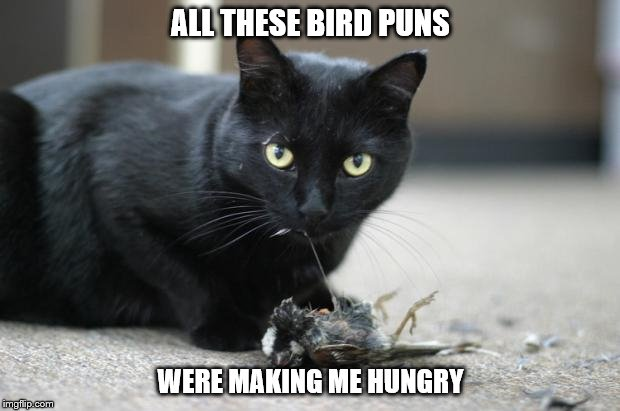 ALL THESE BIRD PUNS WERE MAKING ME HUNGRY | made w/ Imgflip meme maker