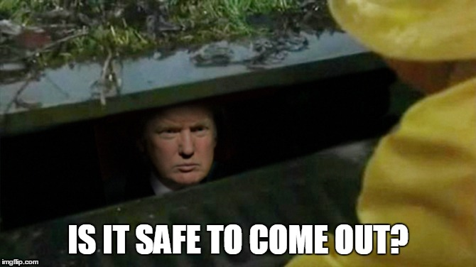 IS IT SAFE TO COME OUT? | made w/ Imgflip meme maker