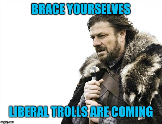 Brace Yourselves X is Coming Meme | BRACE YOURSELVES LIBERAL TROLLS ARE COMING | image tagged in memes,brace yourselves x is coming | made w/ Imgflip meme maker