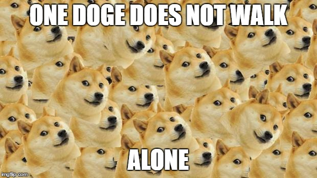 Multi Doge | ONE DOGE DOES NOT WALK ALONE | image tagged in memes,multi doge | made w/ Imgflip meme maker