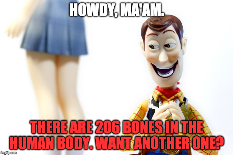 Woody's Bad Pickup Lines #10 | HOWDY, MA'AM. THERE ARE 206 BONES IN THE HUMAN BODY. WANT ANOTHER ONE? | image tagged in hentai woody,woody,bones,human body,funny,stupid | made w/ Imgflip meme maker
