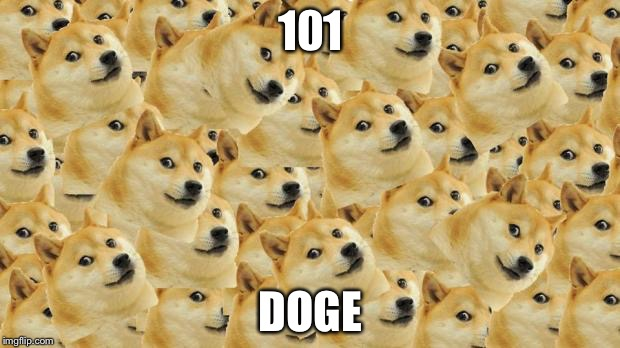 Multi Doge | 101 DOGE | image tagged in memes,multi doge | made w/ Imgflip meme maker
