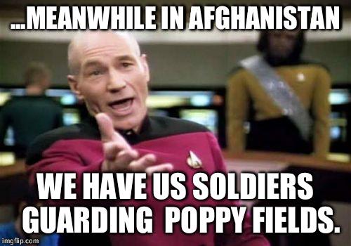 110jo5 afghanistan poppy fields wtf imgflip,Poppy Meme