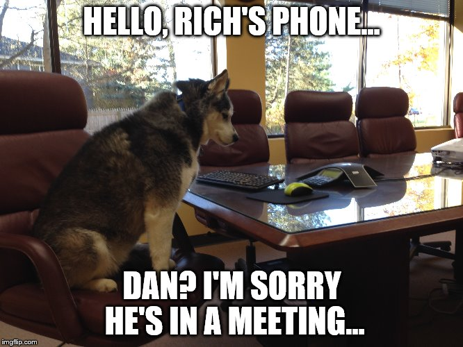 Husky Secretary | HELLO, RICH'S PHONE... DAN? I'M SORRY HE'S IN A MEETING... | image tagged in siberian husky,secretary,conference room,office,phone call | made w/ Imgflip meme maker