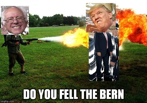 DO YOU FELL THE BERN | image tagged in do you fell the bern | made w/ Imgflip meme maker