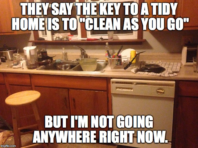 "Not a Neat Freak  | THEY SAY THE KEY TO A TIDY HOME IS TO ""CLEAN AS YOU GO"" BUT I'M NOT GOING ANYWHERE RIGHT NOW. 