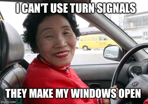Chinese lady driver | I CAN'T USE TURN SIGNALS THEY MAKE MY WINDOWS OPEN | image tagged in driver,old lady,chinese lady driver | made w/ Imgflip meme maker