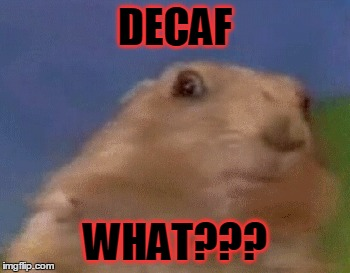 DECAF WHAT??? | made w/ Imgflip meme maker