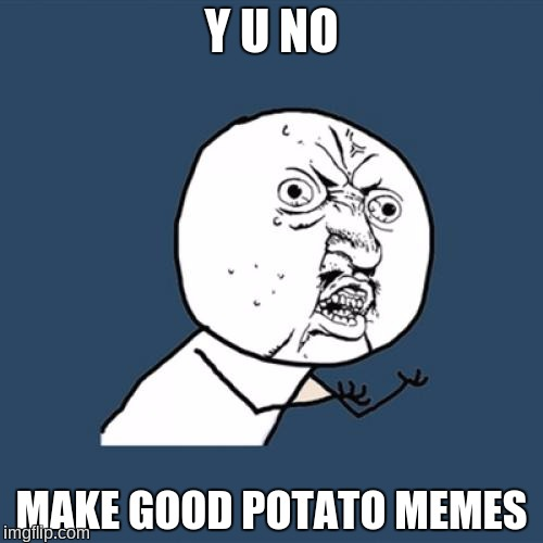 Y U No | Y U NO MAKE GOOD POTATO MEMES | image tagged in memes,y u no,potato,taters,potato memes | made w/ Imgflip meme maker