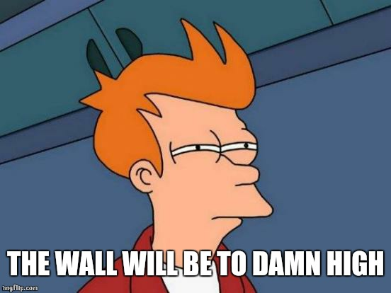 Futurama Fry Meme | THE WALL WILL BE TO DAMN HIGH | image tagged in memes,futurama fry | made w/ Imgflip meme maker