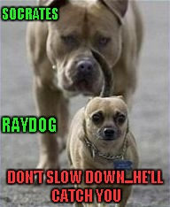 SOCRATES RAYDOG DON'T SLOW DOWN...HE'LL CATCH YOU | made w/ Imgflip meme maker