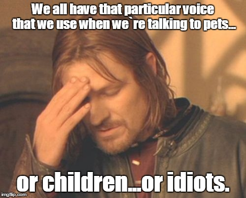 Frustrated Boromir |  We all have that particular voice that we use when we`re talking to pets... or children...or idiots. | image tagged in memes,frustrated boromir | made w/ Imgflip meme maker
