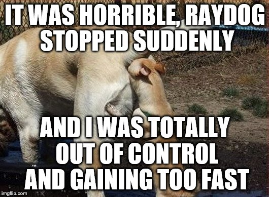 IT WAS HORRIBLE, RAYDOG STOPPED SUDDENLY AND I WAS TOTALLY OUT OF CONTROL AND GAINING TOO FAST | made w/ Imgflip meme maker
