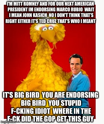 Big Bird Turd Romney | I'M MITT ROMNEY AND FOR OUR NEXT AMERICAN PRESIDENT IM ENDORSING MARCO RUBIO  WAIT  I MEAN JOHN KASICH  NO I DON'T THINK THAT'S RIGHT EITHER | image tagged in big bird and mitt romney,mitt romney,marco rubio,ted cruz,john kasich,funny memes,PoliticalMemes | made w/ Imgflip meme maker