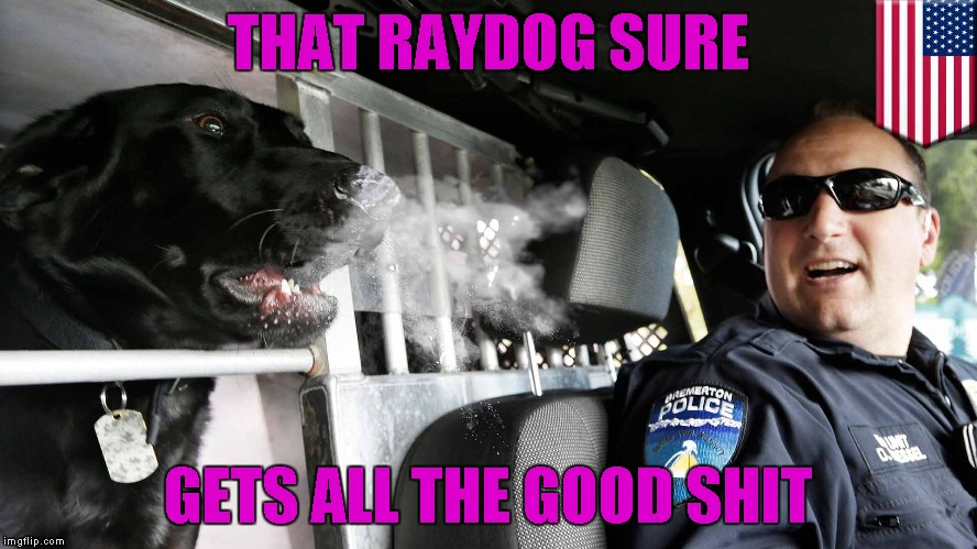 THAT RAYDOG SURE GETS ALL THE GOOD SHIT | made w/ Imgflip meme maker