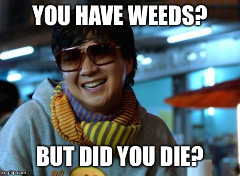 mr chow | YOU HAVE WEEDS? BUT DID YOU DIE? | image tagged in mr chow | made w/ Imgflip meme maker