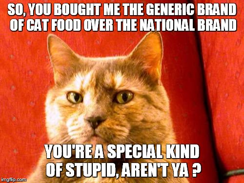 Suspicious Cat | SO, YOU BOUGHT ME THE GENERIC BRAND OF CAT FOOD OVER THE NATIONAL BRAND YOU'RE A SPECIAL KIND OF STUPID, AREN'T YA ? | image tagged in memes,suspicious cat | made w/ Imgflip meme maker