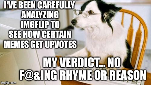 How to get up votes | I'VE BEEN CAREFULLY ANALYZING IMGFLIP TO SEE HOW CERTAIN MEMES GET UPVOTES MY VERDICT... NO F@&ING RHYME OR REASON | image tagged in dog computer,imgflip,confused | made w/ Imgflip meme maker