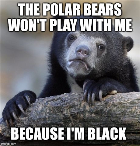 Confession Bear Meme | THE POLAR BEARS WON'T PLAY WITH ME BECAUSE I'M BLACK | image tagged in memes,confession bear | made w/ Imgflip meme maker
