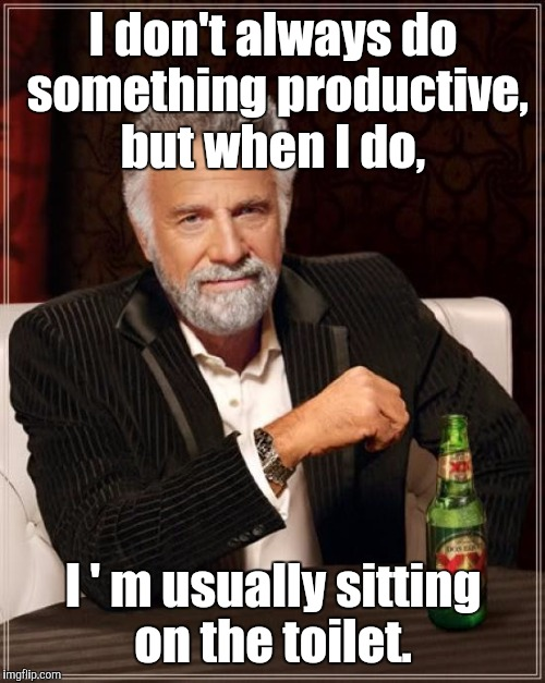 The Most Interesting Man In The World Meme | I don't always do something productive, but when I do, I ' m usually sitting on the toilet. | image tagged in memes,the most interesting man in the world | made w/ Imgflip meme maker