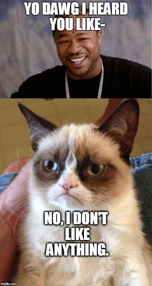yeah, no one messes with grumpy cat, NO ONE | YO DAWG I HEARD YOU LIKE- NO, I DON'T LIKE ANYTHING. | image tagged in grumpy cat,yo dawg heard you | made w/ Imgflip meme maker